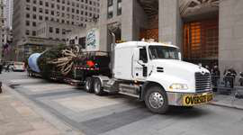 Christmas tree bound for Rockefeller Center in New York. (Photo Mack Trucks)