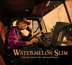 WatermelonSlimCover