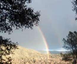Former trucker walloped by 'double rainbow'