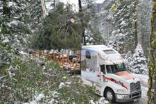 Mack to haul Capitol Christmas tree