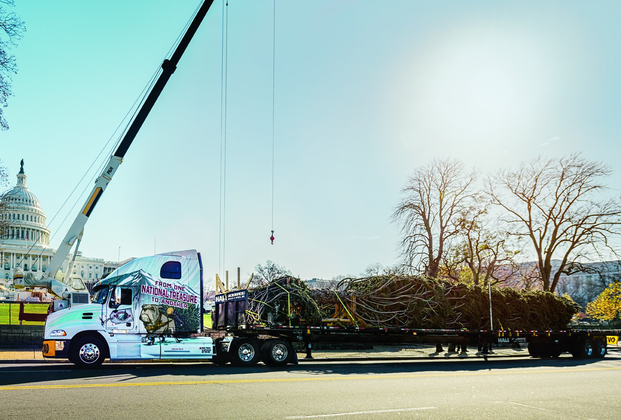 73-foot Capitol Christmas tree rides in on a Mack
