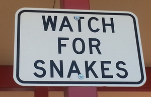 Plagues, vermin, snakes!