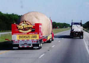 Big Idaho Potato