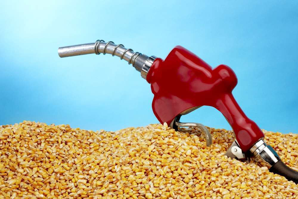 how to make b10 biofuel
