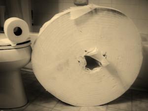 Giant toilet paper
