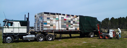 """In mid-March this year, Chris Andreychik reports, """"we moved 242 live beehives and about as many empty hives from Fort Myers, Fla., to Bristol"""" in the same state. For the purpose, """"we utilized our 1979 Kenworth K100C,"""" better known to the haulers, with affection, of course, as """"Brutus."""" Their """"boogie north"""" took place """"in the wee hours of the morning so our cargo wouldn't fly away. Only got stung once in the process!"""""""