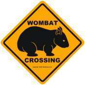 wombat-crossing
