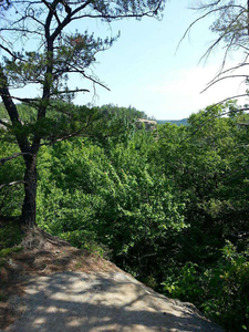 View from the picnic area high up near Natural Bridge.