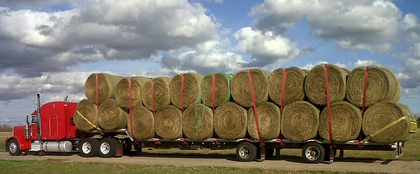 "This ""big load of big bales"" was hauled by XS Trucking Unit No. 01, says Randy Schmutz. Big sky, too, eh?"