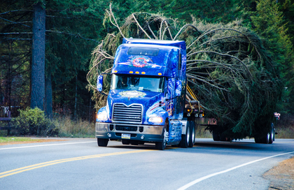Mack Pinnacle hauling Capitol Christmas tree