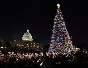 Capitol Christmas Tree lighting1 (2)