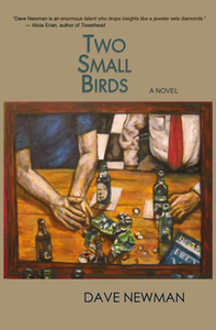 "You can pick up a print or ebook copy of Dave Newman's ""Two Small Birds"" novel via Amazon."