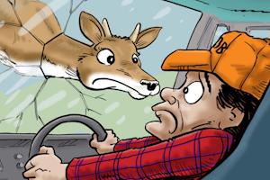 Goodbye, Bambi, we hardly knew ye