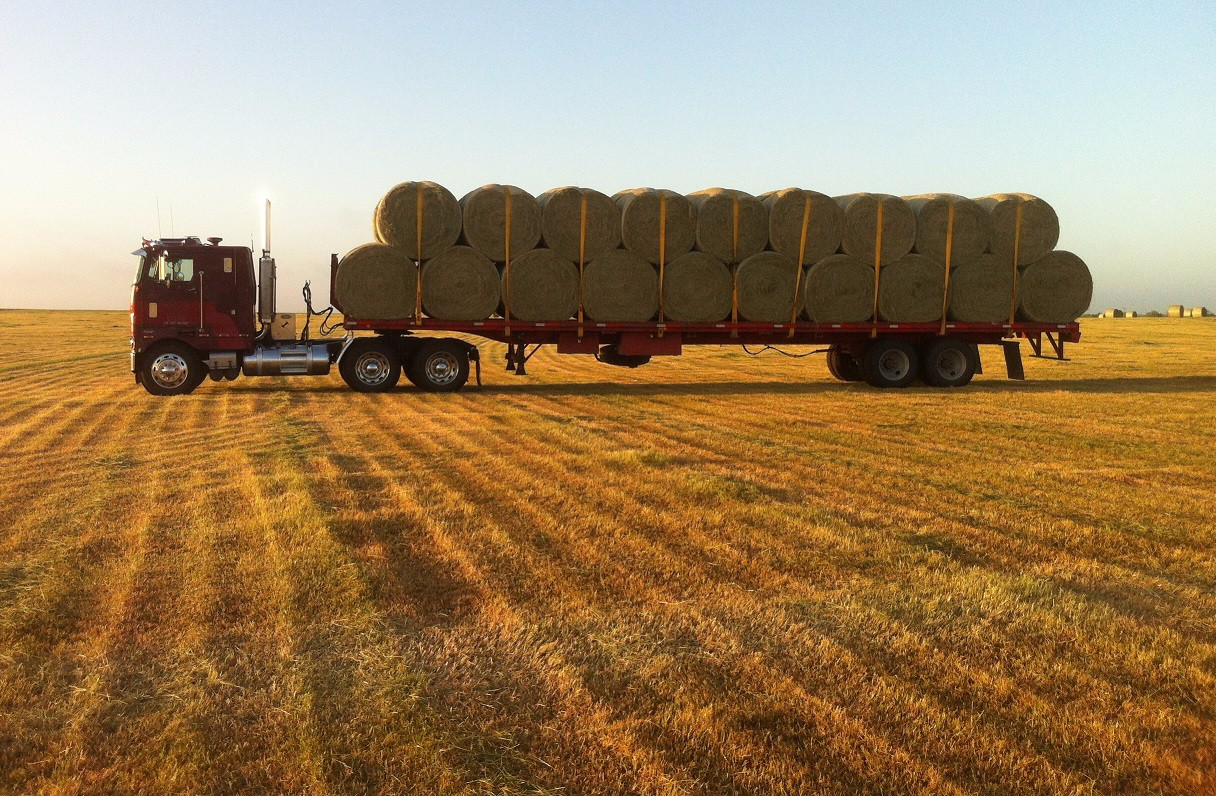 Hay Lift For Truck : Zach beadle s peterbilt cabover he won t soon sell