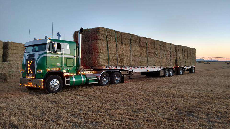 """Stopped counting miles long ago,"" says Kenneth Zwald about this beauty of a cabover. ""Paid for and hauling daily."""