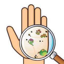 bacteria-hand
