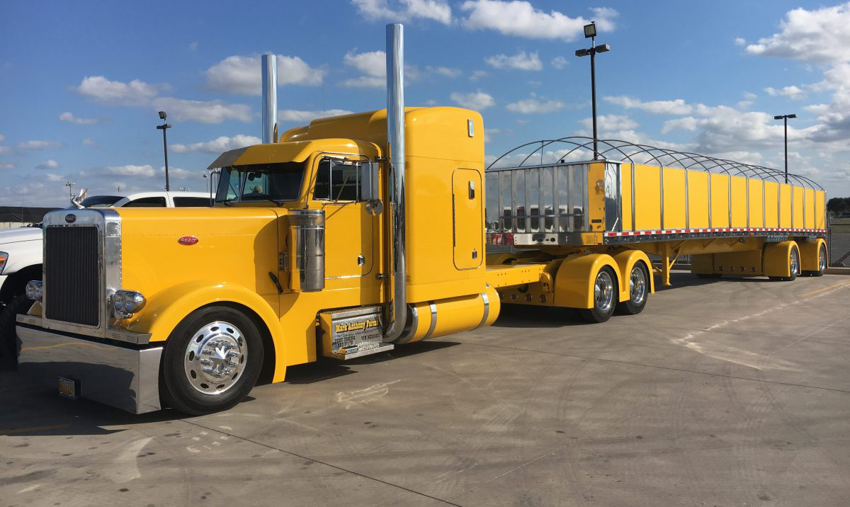 Mark Franzoy's 1992 Peterbilt 379 and matching Wilson flatbed