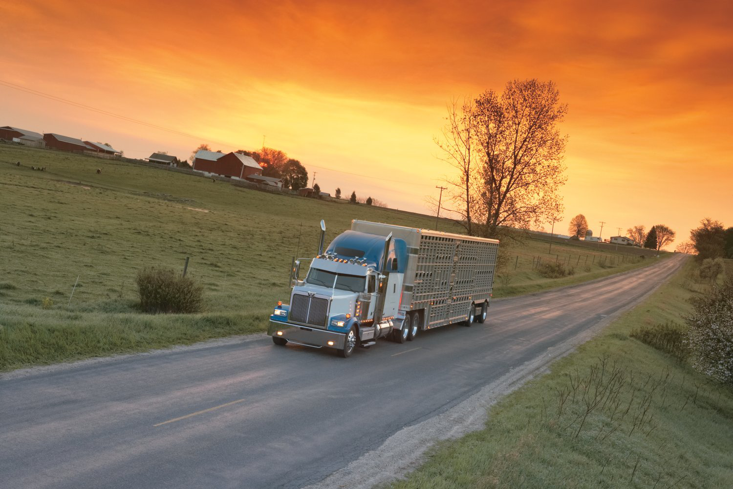 Brake issue prompts recall of about 450 Western Star 4900 trucks