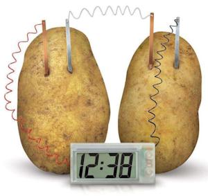Livin' on potato time