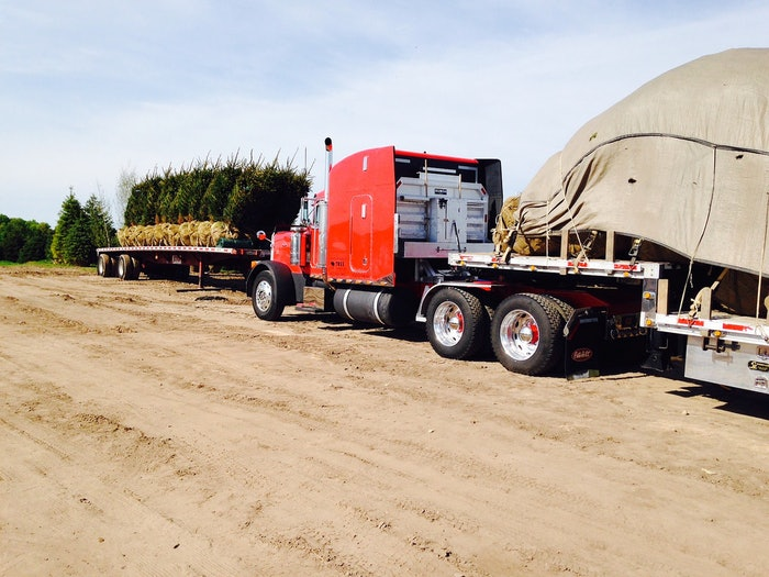 Shipping Trees in MIchigan's UP!