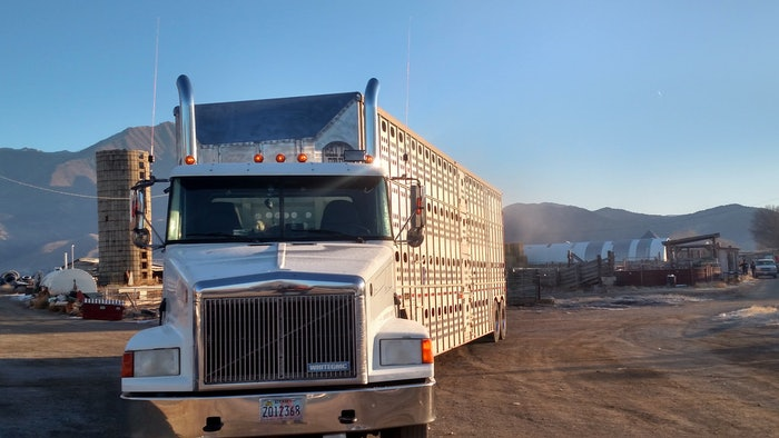 Early morning hauling
