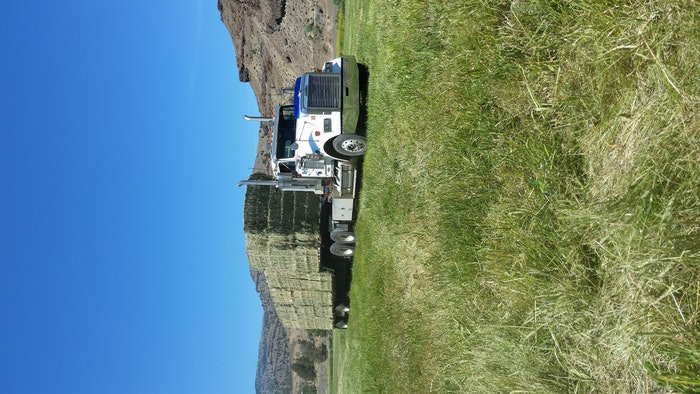 Hay From The South Fork of John Day Rivet