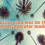 'California's war on the owner-operator model' looking up to the sky with palm trees
