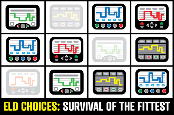 Various ELD clip art images above the text ELD Choices: survival of the fittest